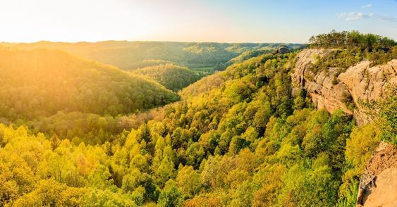 Daniel Boone National Forest | Drive The Nation