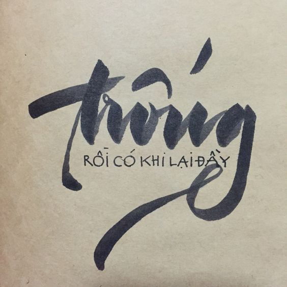 Vietnamese Calligraphy Feelings and Calligrap...