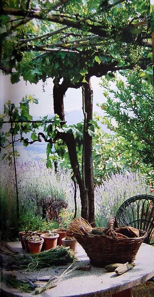 Jerome Goignard, provence style of Living