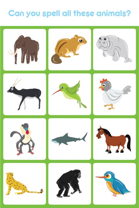 Kids learn the names of different animals as well as learn ...