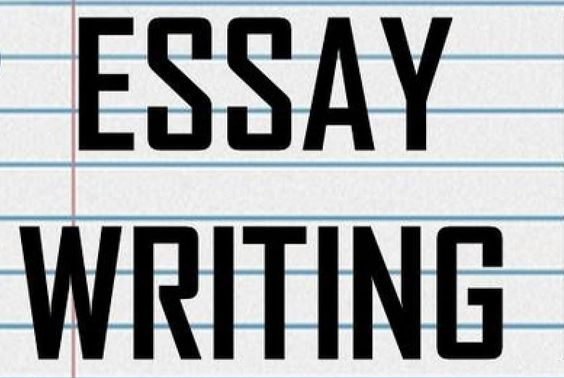 capital essay is here to provide you meticulous essaywriting  capital essay is here to provide you meticulous essaywriting solutions no matter which kind of essay or dissertation writing service you seek