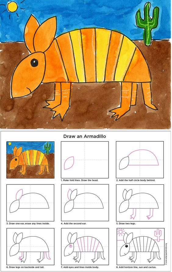 How To Draw An Armadillo Art Projects For Kids School
