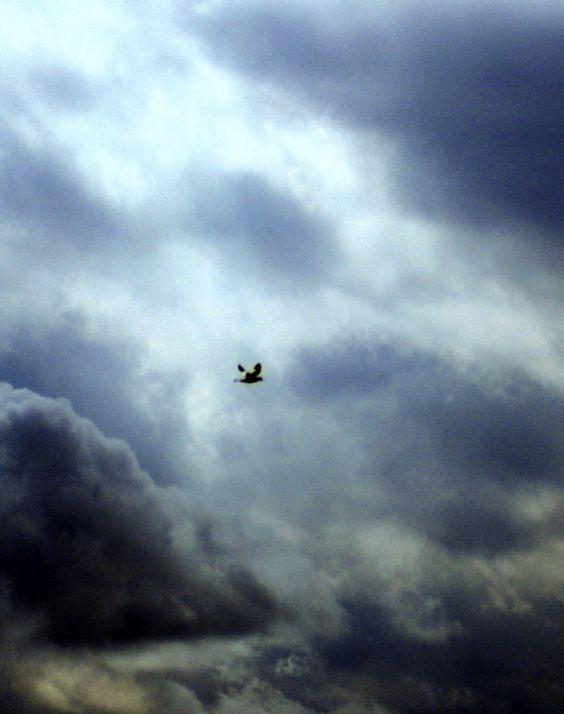 sky photography moody sky scenery photography by Suzannasi on Etsy