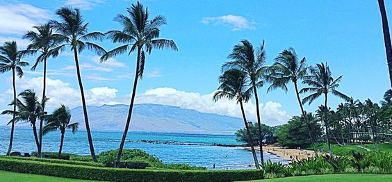 Wailea Condos for sale