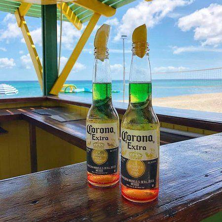 hương vị bia corona extra