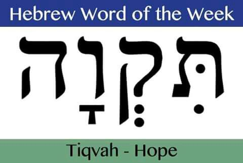 Learn biblical hebrew words and phrases