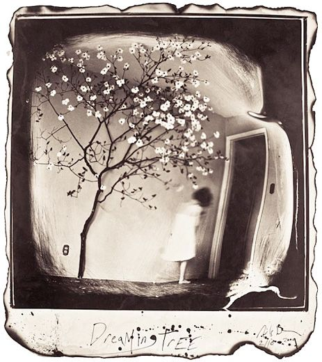 Michael Donnor | Panopticon Gallery