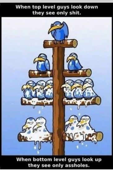 Grappige cartoon hiërarchie