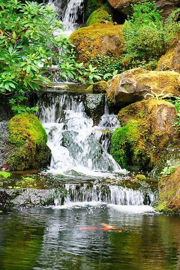 Japanese ponds designs waterfall diego re portfolio for Japanese pond design ideas