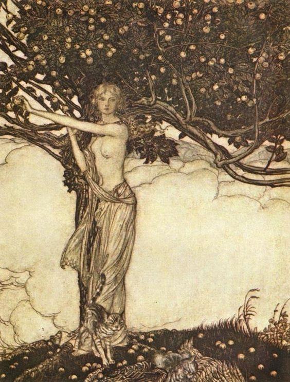 Ilustración de Arthur Rackham para El oro del Rin: Freya, acompañada de sus gatos, toma una manzana del árbol. La Freya de Wagner es una mezcla de las diosas Freyja e Iðunn