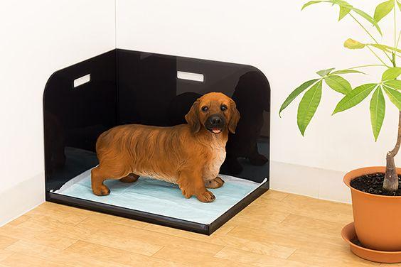 飛び散り はみ出し防止犬トイレ コーナータイプ 犬のトイレ 犬 犬のおしっこ