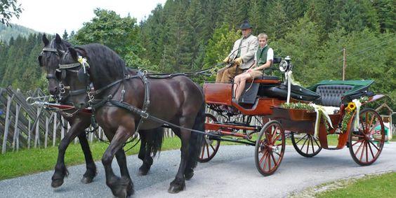 Hochzeitskutschen: Pferdekutschenfahrten und Pferdeschlittenfahrten auf dem Hallmooshof in Filzmoos