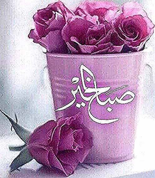 صباح الشهد والعسل صباح الحب والغزل صباح مصحوب بالامل صباح الورد يا عسل Amazing Flowers Planter Pots Flowers