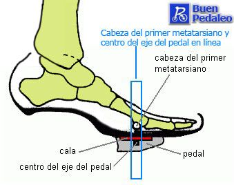 Well this is not in English but it illustrates the proper positioning of your bike shoes. Proper fit and form is essential whether it be your bike or the shoes! So this illustration is to get you thinking about your feet at least :)
