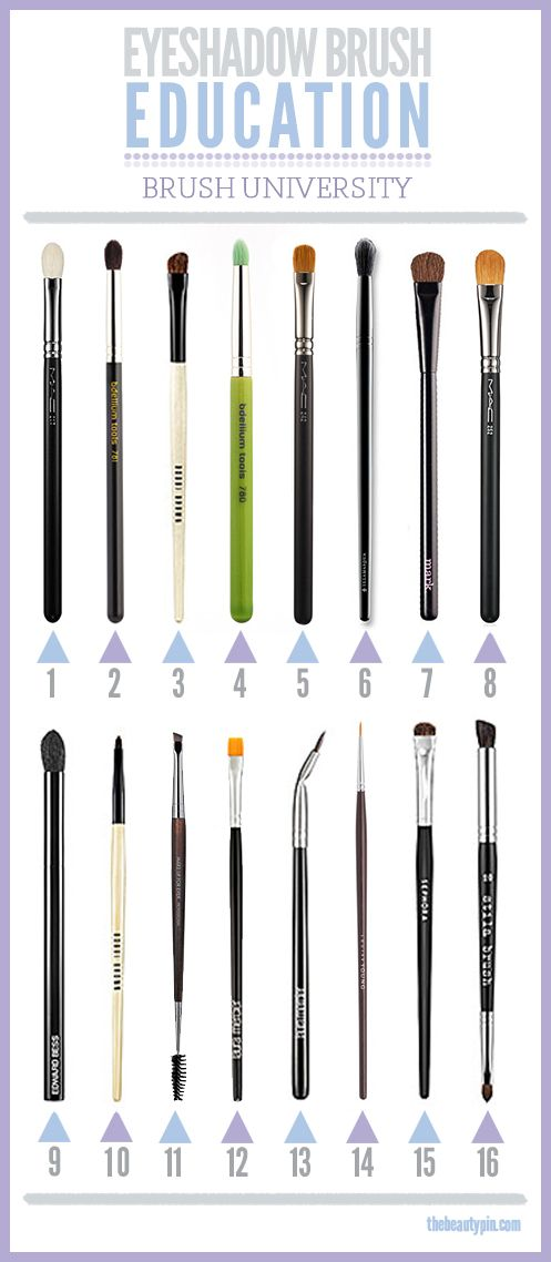 Eyeshadow Brush Education! Which brushes to use when for a flawless eye look! (thebeautypin.com):