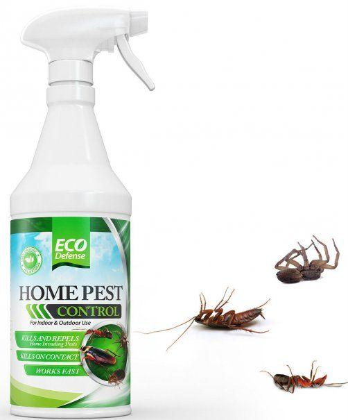 Organocidea Bee Safe 3 In 1 Organic Pest Control Garden Spray Ready To Use Bottle 24 Oz Multicolor Bee Safe Organic Pest Control Pest Control