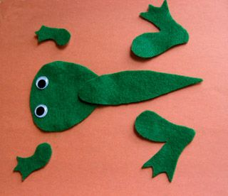 Pattern to create a frog with moveable pieces to recreate the frog life cycle.