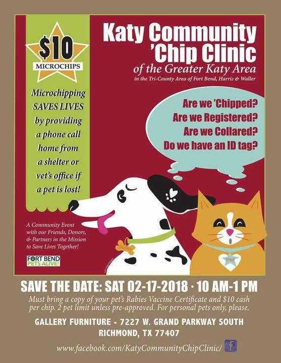 Does Your Pet Need To Be Microchipped Katy Community Chip Clinic Will Be Gallery Furniture Richmond Location This Saturda Your Pet Gallery Furniture Katy