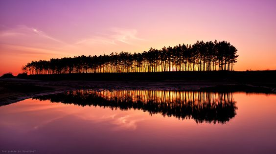 Tranquil sunset by SEO