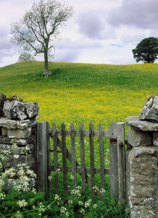old wooden gate to the fields, near Rose cottages and gardens, Britain