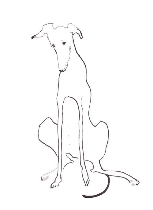 Lurcher Pen and Ink 8x10