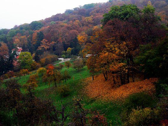 Autumn in Prague by Marcsi Bruscha on 500px