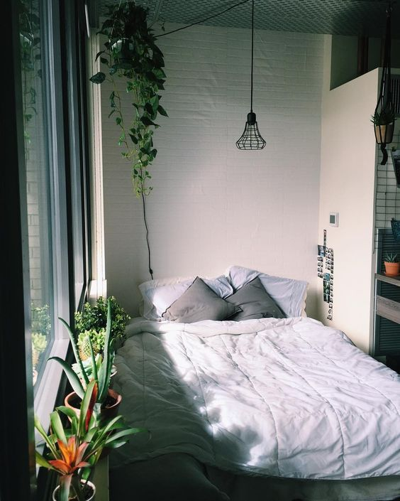 Bedroom with plants, pinterest post - bedroom inspiration | soyvirgo.com
