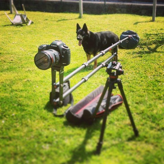 Test de la grue iFootage dans son jardin, sous le soleil, avec son chien comme modèle  #canon #ifootage #video #photo #chien #dog #camera #reflex #numerique #instagood