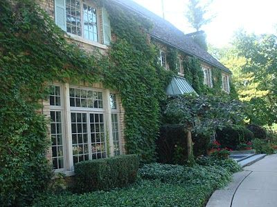 Ivy Covered Cottage -- I love it.