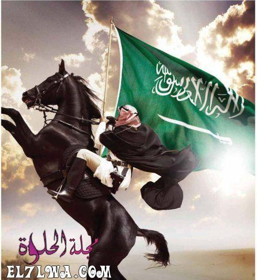 عبارات عن الوطن أجمل عبارات عن الوطن الغالي الوطن هو قلب وروح الإنسان فهو بلا وطن كالأ Pakistan Independence Day National Day Saudi Independence Day Wallpaper