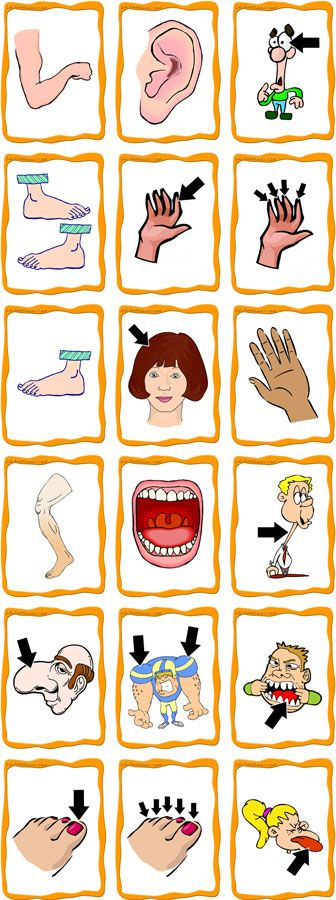 Body parts flash cards pictorial representations #langchat awesome ...