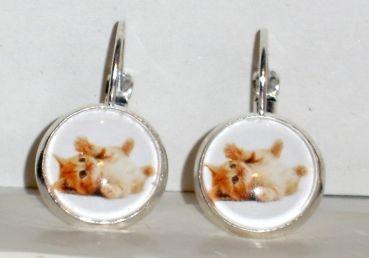 Ohrringe Katze Ohrschmuck Modeschmuck Damen Hänger ohne Stein Glas Neuware