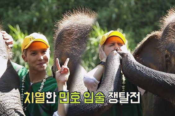 """Watch: WINNER's Song Mino Bonds With Elephants On """"Carefree Travelers"""""""