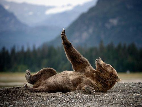 Yoga for yogi