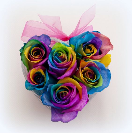 Rainbow roses arragnements rainbow rose buds in keepsake for Pictures of rainbow roses