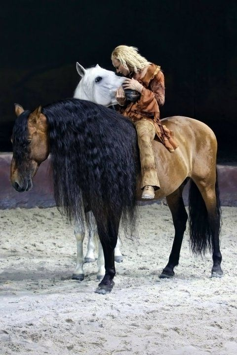 check out the mane, boy I sure would love to braid that