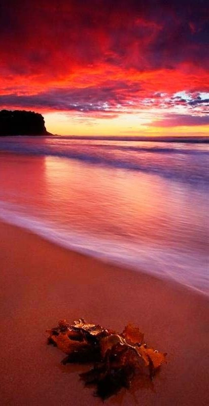 13 Secluded Beaches In Goa You Have To Visit Before They Go Mainstream!