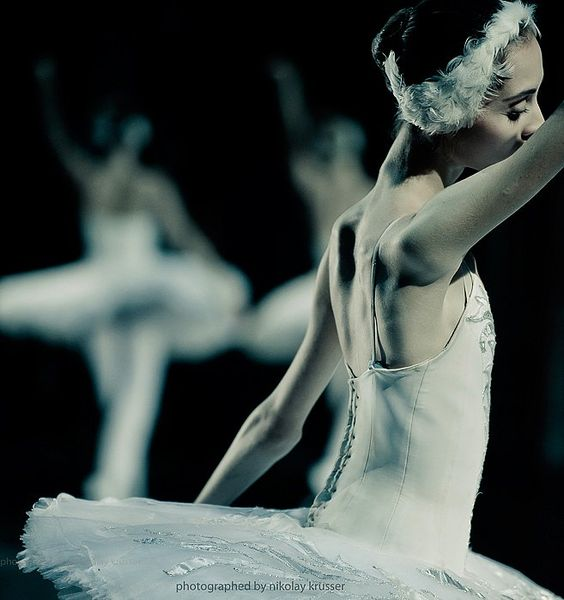 Mikhailovsky's Swan Lake  Photos by Nikolai Krusser