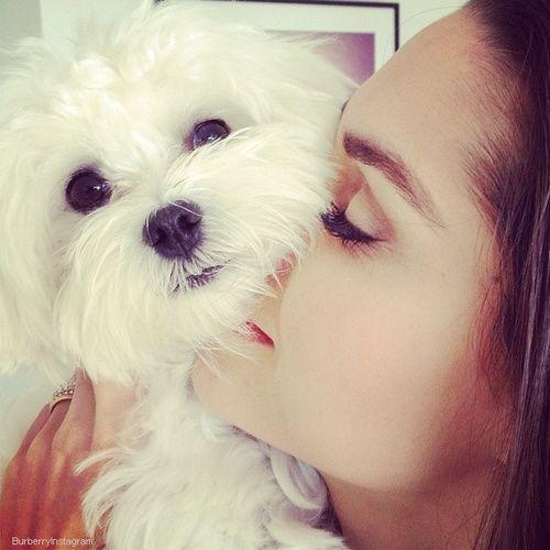Imagem de dog, girl, and love
