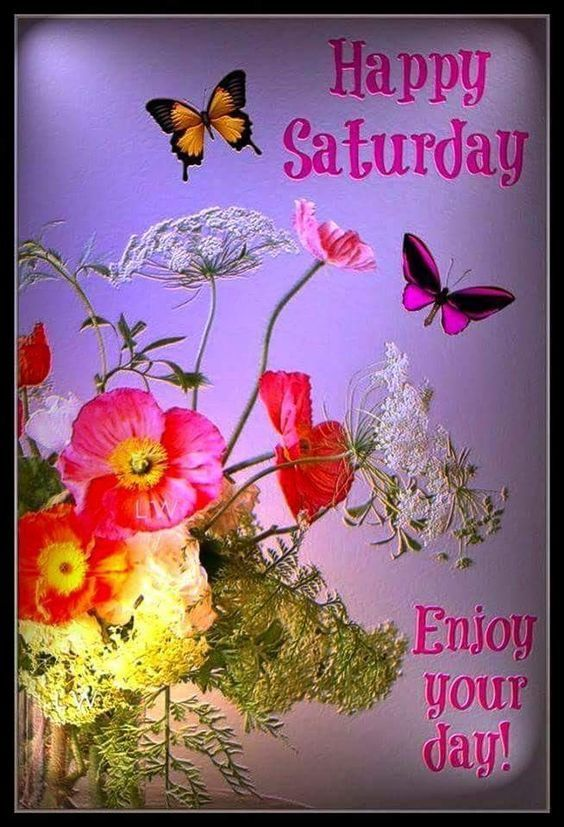 Floral Saturday butterfly floral saturday saturday quotes happy saturday saturday image quotes