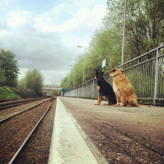 Waiting for a train.