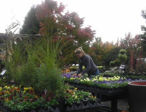 The Hardy Plant Society of Oregon wants you to socialize with fellow gardeners and meet owners of horticultural and garden businesses during the group's new HPSO After Hours events. The first get-together is Saturday, Feb. 27 at Cornell Farm in Portland.