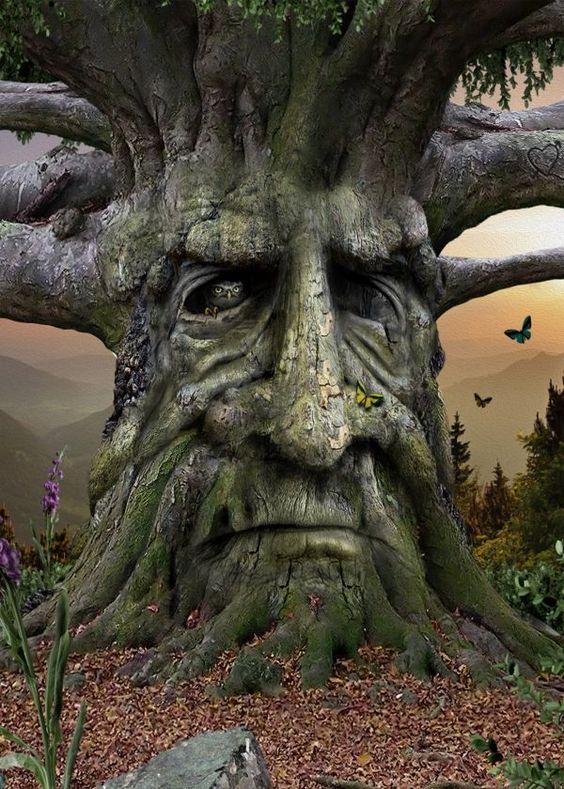 дървени лица - Google Търсене