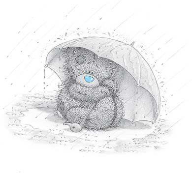 Teddy gris: