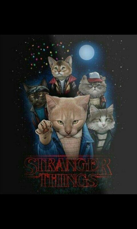 猫になったストレンジャーシングスの画像