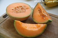 Growing and harvesting cantalope.