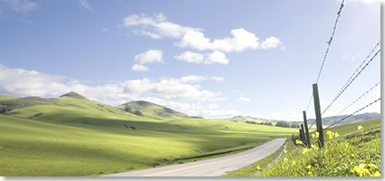 California Day Trips provides information on popular day trip spots throughout California. I was a periodic contributor to this webpage. I prepared articles on a variety of tourist spots in the state.