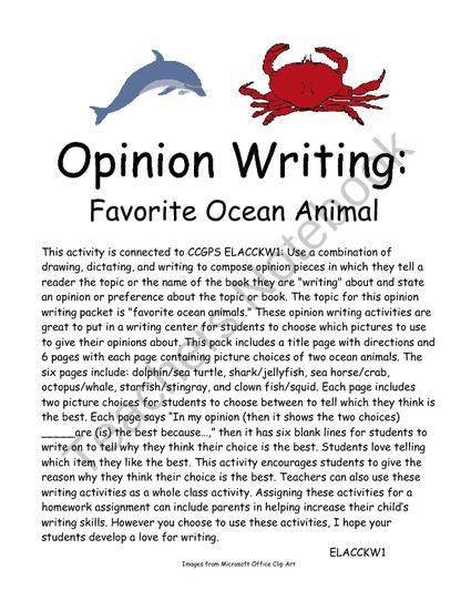 opinion essay animal rights