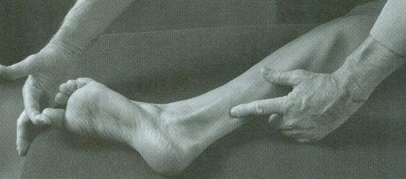 Tixa S. Atlas de Anatomía Palpatoria. Tomo 2, miembro inferior. 4ª ed. Barcelona: Elsevier; 2014.