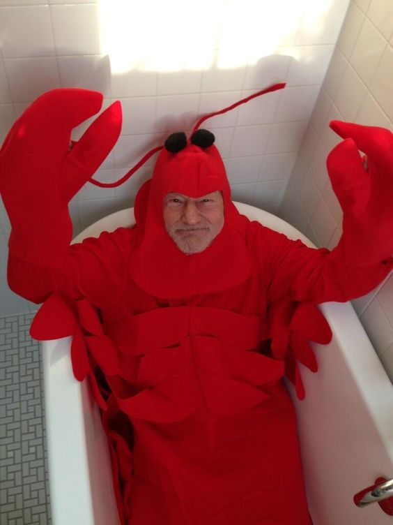 When you're feeling sad, here's a picture of Patrick Stewart dressed as a lobster in a tub